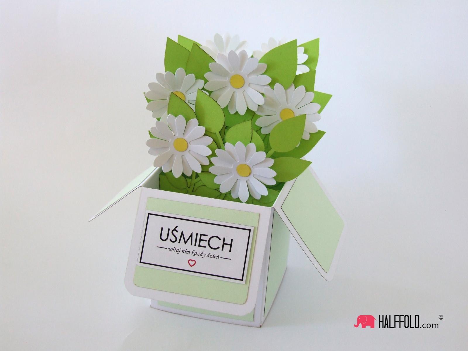 kartka biale kwiaty w pudełku halffold studio logo